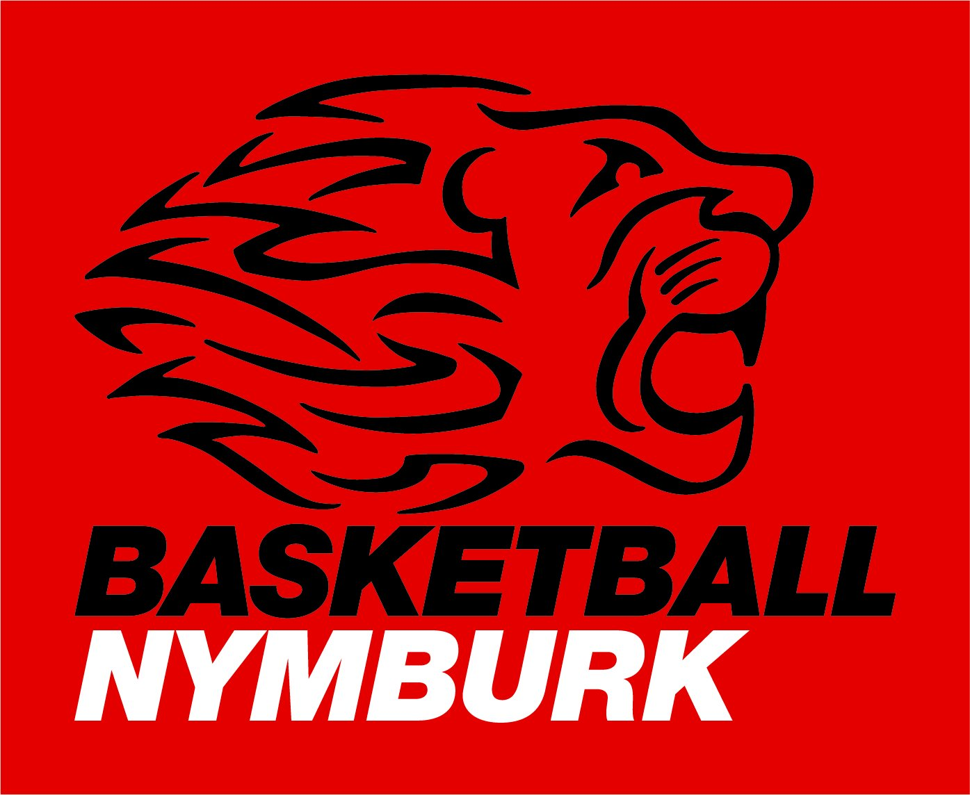 Era Basketball Nymburk logo